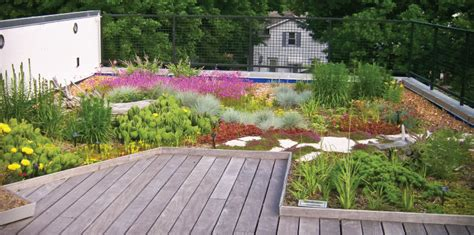 landscaping for sustainability ensia