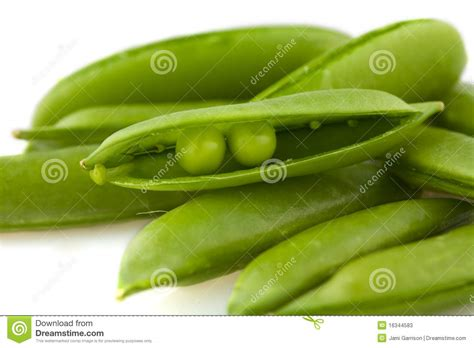 two peas in their pod two peas in a pod stock photos image 16344583