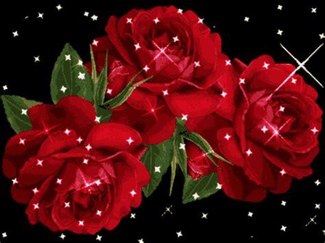 imagenes de flores brillantes 171 rosas brillantes 187 164 164 mi coleccion de rosas 164 164 robi8