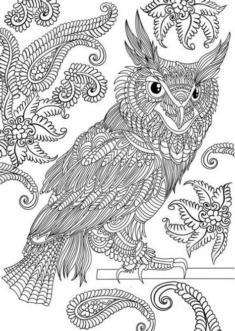 wonderful owls coloring book for adults and stress reduction combining nature poetry and for relaxation meditation and creativity volume 2 books paisley coloring pages te boyama sayfalar箟