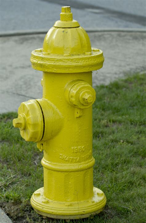yellow fire hydrant photober free photos free images for all