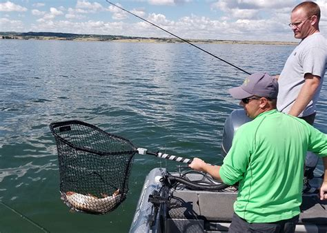fishing boat value the value of fishing north dakota game and fish