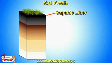 soil types soil horizons profile unit  kids youtube