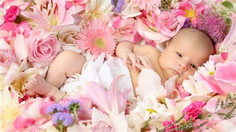 wallpaper for desktop of baby desktop hd pink baby wallpapers wallpapersfans com