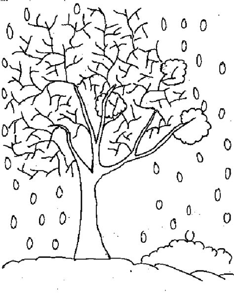 winter trees colouring pages