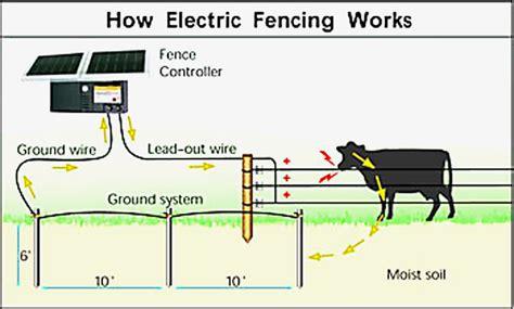 electric fencing circuit diagram invisible fence wiring diagram collection wiring collection
