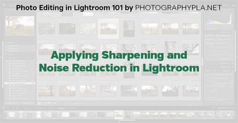 lightroom tutorial noise reduction blog lightroom lightroom 101 tutorials applying