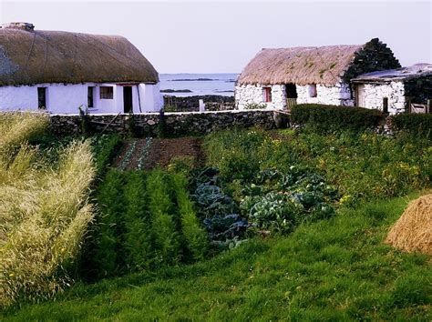 traditional cottages co galway ireland by the irish
