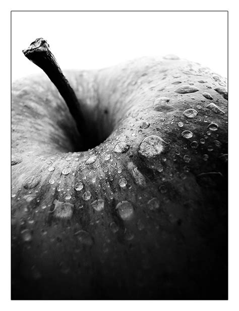 apple black  white   definition  deviantart