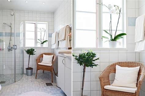decorare bagno foto decorare il bagno con le piante di valeria