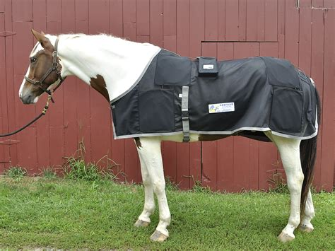 Magnetic Therapy Rugs For Horses by Magnetic Rugs For Horses Rugs Ideas