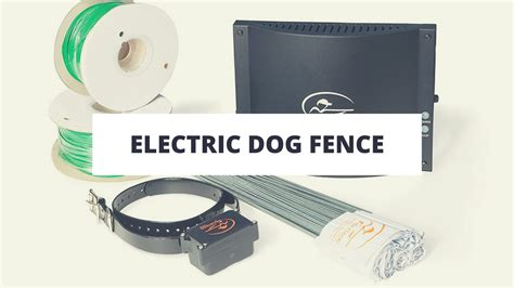 best electric fence top 10 best electric fences in 2017 reviews