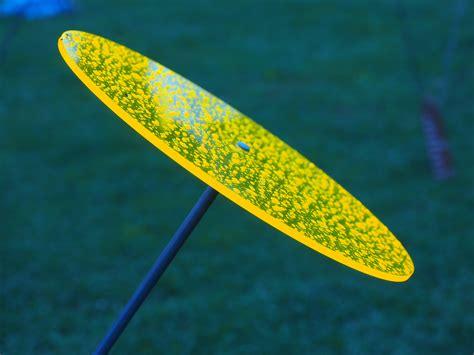 gartendeko neon ilmaisia kuvia siipi puun lehti vihre 228 surffilauta