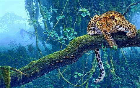 imagenes para fondo de pantalla leopardos tigre de la selva fondos de pantalla tigre de la selva