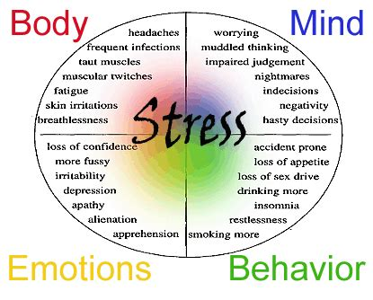 stress the psychology of managing pressure books term stress symptoms effects lesson