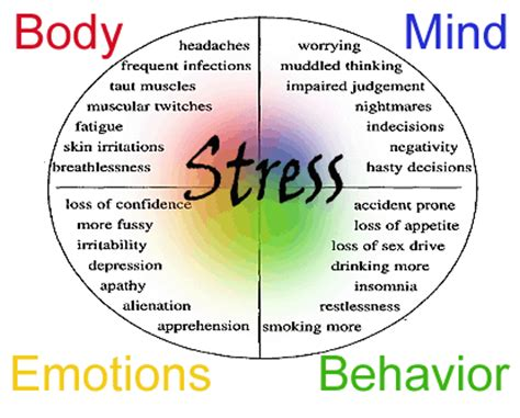the problem of stress how to be healthy