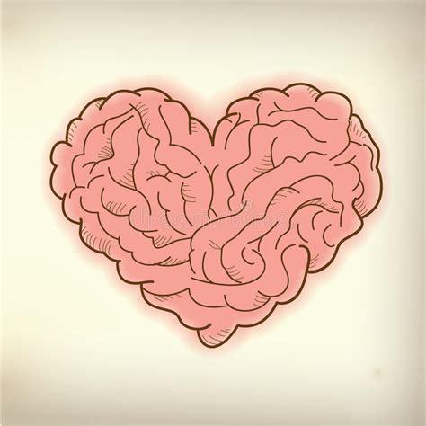 libro heart and brain an brain heart stock vector illustration of imagine vector