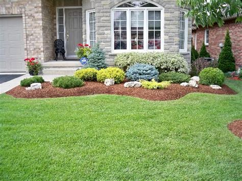 Shrub Garden Ideas Evergreen Shrubs For Landscaping Swerving Garden Bed With Evergreen Shrubs Plants And Accent