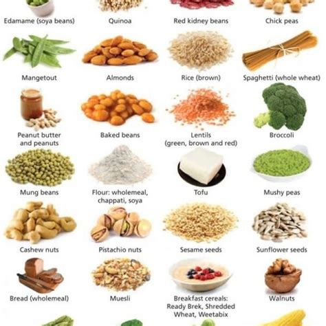 protein high foods protein food list www pixshark images galleries