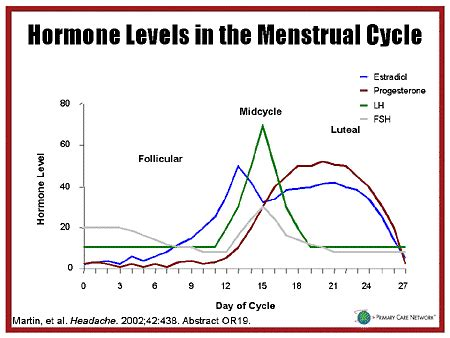 hormone cycle diagram hormone levels during menstrual cycle graph