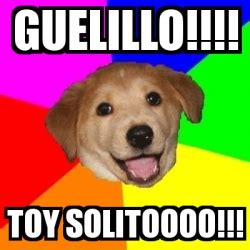Advice Dog Meme Generator - meme advice dog guelillo toy solitoooo 20394287