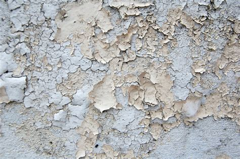 peeling paint texture crusty crumbling peeling paint urbandirty color texture