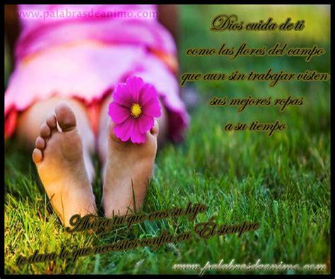 imagenes de jesus flores dios cuida de ti como las flores del co palabras de
