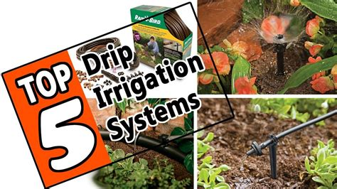 drip irrigation system   top  plant watering