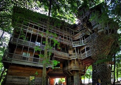 crazy tree houses crazy tree house exterior design and houses pinterest