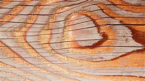 tienda de muebles en vitoria muebles madera vitoria tienda de muebles en vitoria