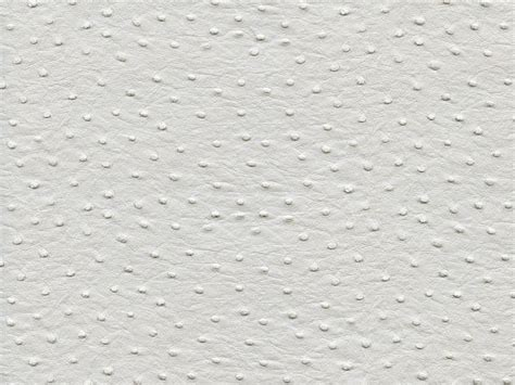 Vinyl Ostrich Upholstery Fabric by Ostrich Vinyl White Upholstery Fabric Faux Leather Ebay