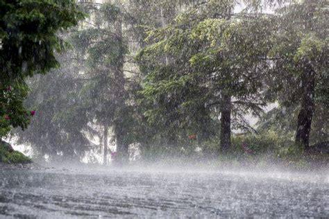 chiuse in italia allerta meteo in tutta italia scuole chiuse per neve e