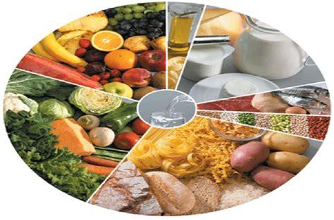 Calendario Año 2004 Sete Grupos De Alimentos Para Uma Dieta Equilibrada