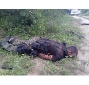 Borderland Beat Mexican Drug Cartels Adopting Military