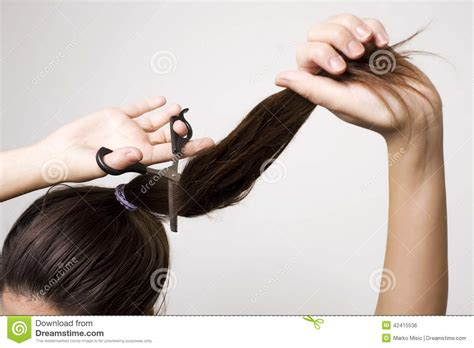 ponytail method cut hair woman cutting her ponytail stock photo image 42415536
