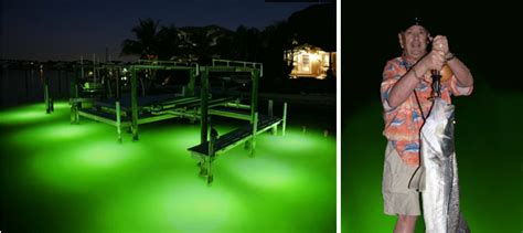 Green Fishing Light by Green Dock Lights Synergy Lighting