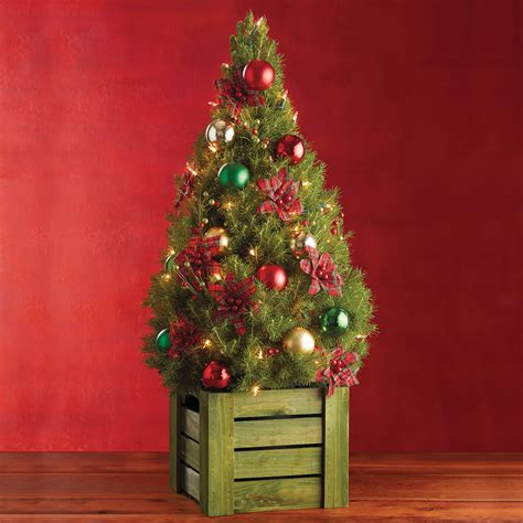 red plaid mini christmas tree mini real christmas trees
