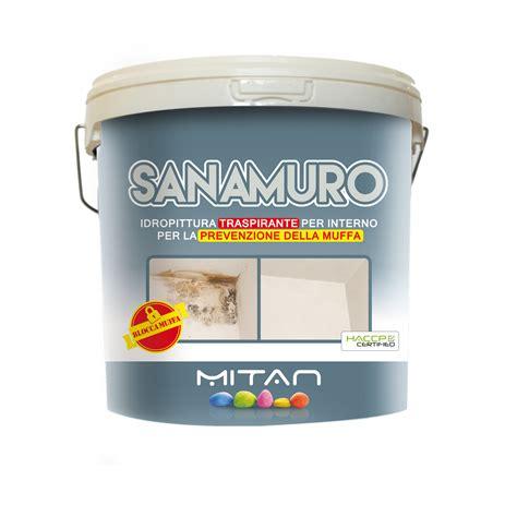migliore pittura per interni migliore pittura traspirante per interni idea immagine home