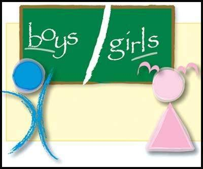 Research Paper On Single Gender Classrooms by Beloit Daily News News Schools New Ground With Single Class Plans