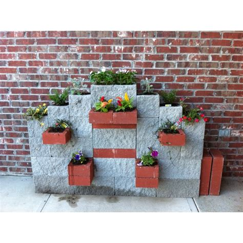 Cement Block Planters by Concrete Blocks Made Into A Planter Outside Ideas