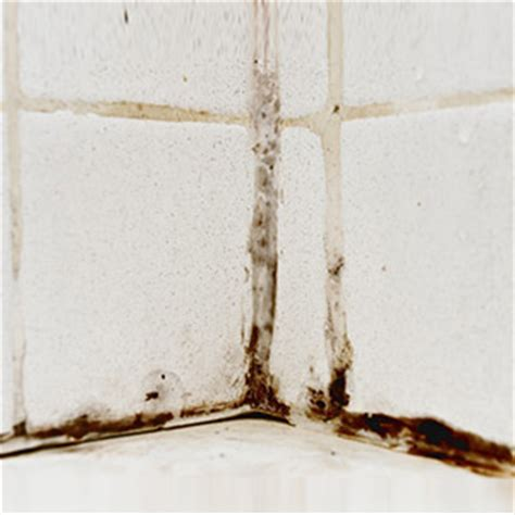 Can Mold In Shower Make You Sick by Is Your Bathroom You Sick Grandparents
