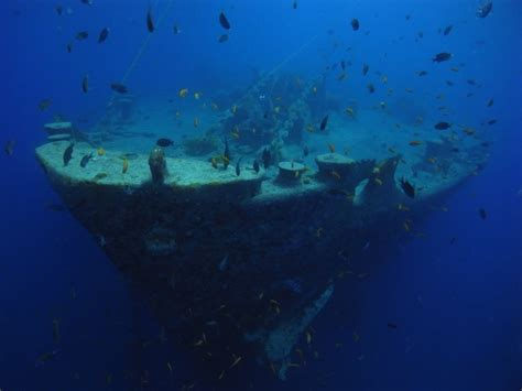 best place to scuba dive 10 best places to scuba dive for a world travel list