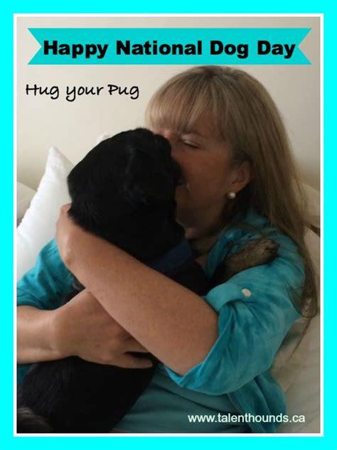 national hug a pug day i hug my pug talent hounds