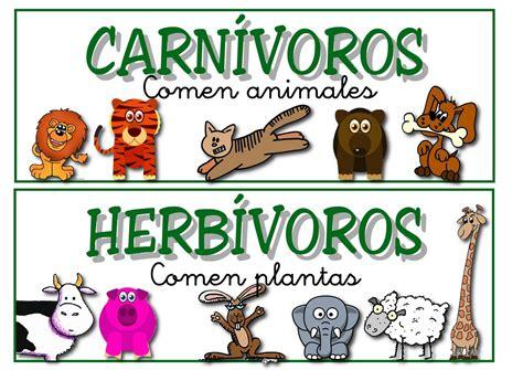 imagenes de animales viviparos y oviparos emnaq como clasificar los animales
