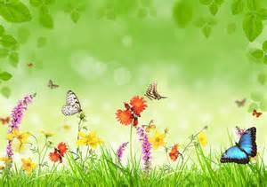 Preciosas mariposas y de muchos colores para alegrar tu pantalla