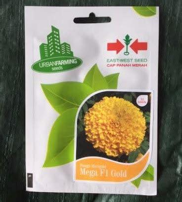 1 000 Benih Biji Bibit Selada Butterhead Merah Retail Pack jual benih marigold mega gold f1 10 biji panah merah bibit