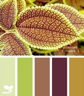 Pallet 78 Colour 78 best images about church website color schemes on