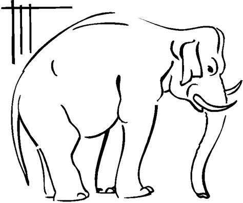elephant trunk coloring page baby elephant trunk up coloring pages