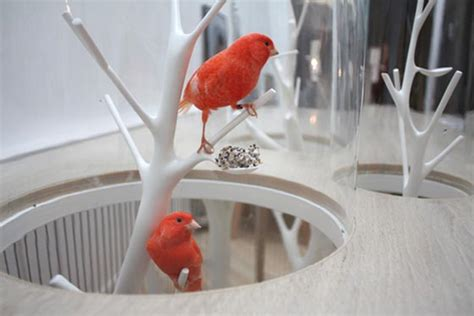 cage archibird  modern bird cage doubles   table