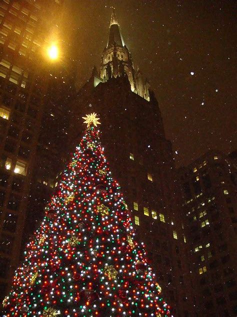 chicago christmas tree lighting 1000 images about chi town on pinterest parks
